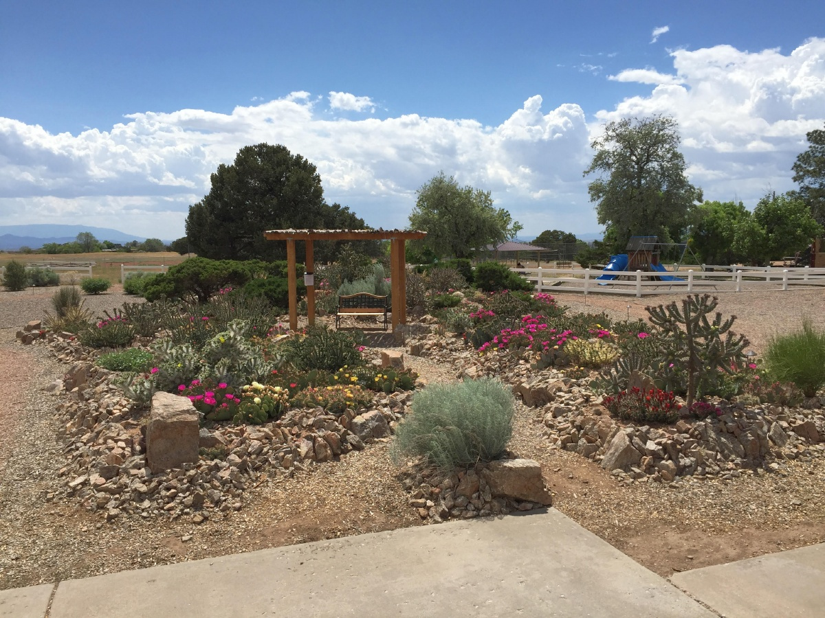 Recent events for the Cactus and Succulent Society of New Mexico